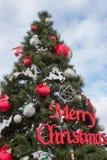 在街道上的大圣诞树,在圣诞树的圣诞快乐在冬天明信片 免版税库存照片