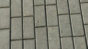 在街道上的灰色铺的瓦片 股票录像