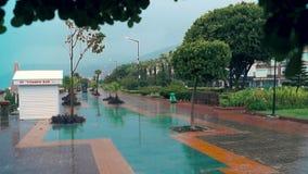 在街道上的雨 影视素材