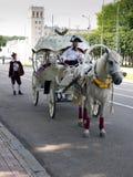 在街道上的马支架在现代城市 免版税图库摄影
