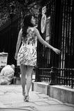在街道的亚洲妇女步行在孚日省地方附近 库存图片