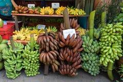 在街道货摊的五颜六色的香蕉种类 免版税库存照片