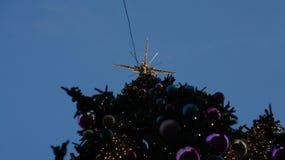 在街道,星期三, 2017年12月13日的圣诞树 库存照片