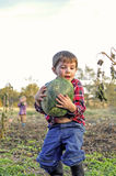 在补丁的男孩运载的西瓜 免版税库存照片