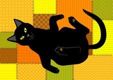 在补缀品背景的猫 免版税库存图片