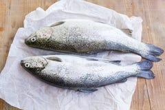 在表上的两条鳟鱼 免版税库存图片