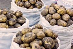 在袋子待售,特写镜头的黄色土豆 免版税库存图片