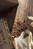 在袋子的立即苦苣生茯咖啡 免版税库存照片