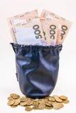 在袋子的货币 库存图片