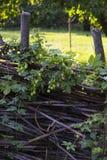 在被交织的木标尺种族样式的篱芭  库存图片
