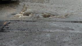 在被充斥的城市街道上的水流动入风暴流失 股票视频