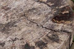 在被切开的木头的裂缝 免版税库存照片