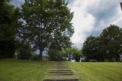 在被剪的草中间的步,导致小山的上面 免版税库存图片