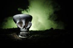 在被定调子的轻的黑暗的背景的可怕头骨 万圣夜背景或恐怖题材的设计 选择聚焦 图库摄影