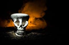 在被定调子的轻的黑暗的背景的可怕头骨 万圣夜背景或恐怖题材的设计 选择聚焦 免版税图库摄影