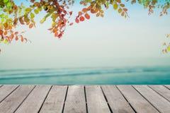 在被弄脏的减速火箭的淡色海滩和秋叶框架的木地板 免版税图库摄影