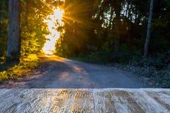 在被弄脏的森林公路背景的空的土气木台式  免版税图库摄影