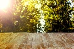 在被弄脏的森林背景的空的土气木台式在summ 免版税库存照片