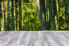 在被弄脏的森林背景的空的土气木台式在summ 免版税库存图片
