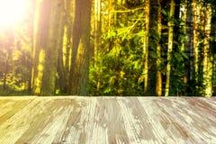在被弄脏的森林背景的空的土气木台式在summ 免版税图库摄影