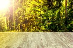 在被弄脏的森林背景的空的土气木台式在summ 库存照片