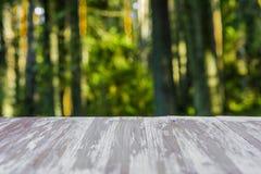 在被弄脏的森林背景的空的土气木台式在summ 库存图片