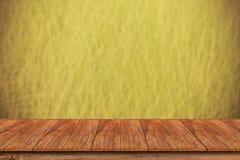 在被弄脏的草背景的木台式 库存图片