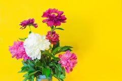 在被弄脏的黄色backgroun的白色和紫色牡丹花束 免版税库存图片