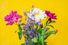 在被弄脏的黄色backgroun的白色和紫色牡丹花束 库存图片