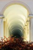 在被成拱形的走廊前面的灌木 免版税库存图片