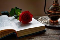 在被打开的书的红色玫瑰 图库摄影