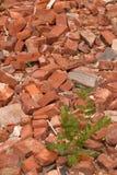 在被拆毁的堆的砖 免版税图库摄影