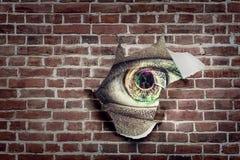 在被撕毁的纸孔的眼睛  免版税库存照片