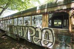 在被放弃的电车的街道画在森林 免版税图库摄影