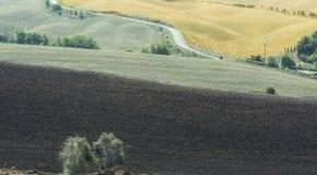 在被犁的领域之间的柏油路 库存图片