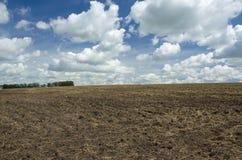 在被犁的领域的美丽的白色云彩 免版税库存照片