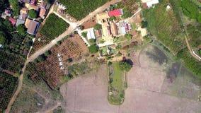 在被犁的领域种植园和房子的高飞行 股票视频