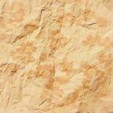 在被粉碎的老乌贼属纸张的雏菊 免版税图库摄影
