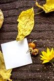 在被编织的棕色纺织品背景的背景的白方块叶子,干燥黄色离开,红色野生玫瑰色莓果 tex的地方 免版税库存照片
