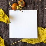 在被编织的棕色纺织品背景的背景的白方块叶子,干燥黄色离开,红色野生玫瑰色莓果 tex的地方 库存照片