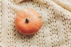 在被编织的毛线衣的美丽的南瓜在土气木背景 库存图片