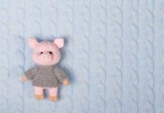 在被编织的织地不很细背景的被编织的玩具猪 库存照片