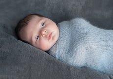 在被编织的温暖的毯子包裹的新出生的婴孩 美丽的纵向 免版税库存图片