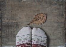 在被编织的羊毛袜子和橡木叶子的腿 图库摄影