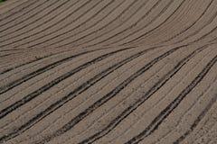在被耕的地面纹理的条纹 库存照片