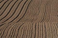 在被耕的地面纹理的条纹 免版税库存照片