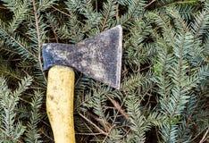在被裁减的云杉的分支的轴 免版税库存照片