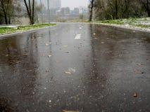 在被解冻的雪以后骑自行车和一个跑马场在公园 库存照片