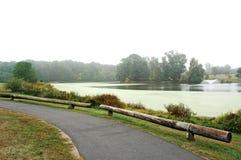 在被铺的路径附近的湖 免版税库存图片