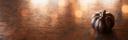 在被阐明的金属背景的南瓜 库存照片
